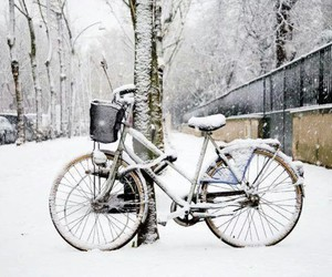 snow, winter, and bicycle image