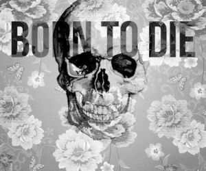 black, born to die, and flowers image