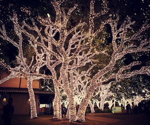 christmas, beautiful, and lights image