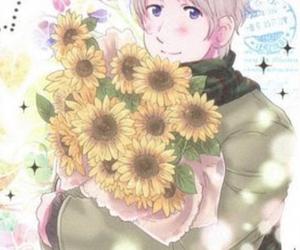 hetalia, russia, and sunflower image