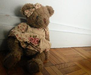 teddy bear and marlie image