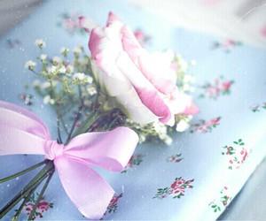 flowers, ورد, and العالم image