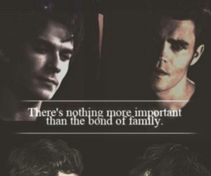 tvd, brothers, and the vampire diaries image