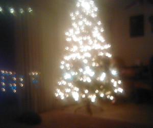 christmas tree, lights, and navidad image