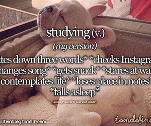 funny, justgirlythings, and school image