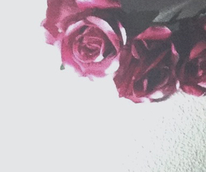 grunge, indie, and roses image