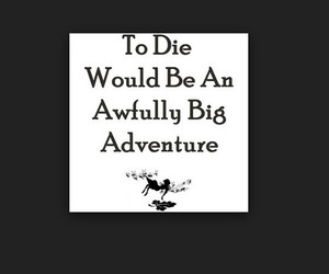 adventure, big, and fly image