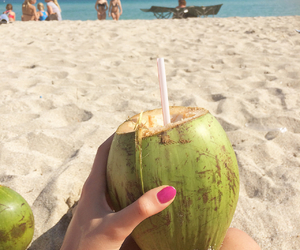 beach, blue, and coconut image