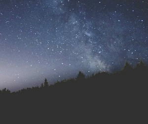 forest, night, and sky image