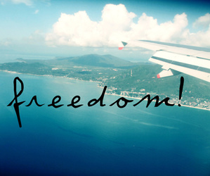 freedom, free, and plane image