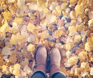 autumn, boots, and yellow image