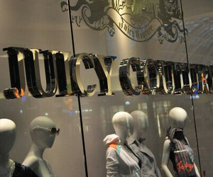 fashion, juicy couture, and luxury image
