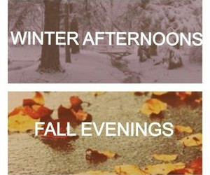 summer, winter, and spring image
