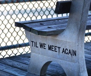 love, quotes, and bench image