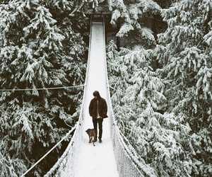 bridge, dog, and man image