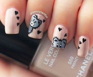 nails, cute, and bear image