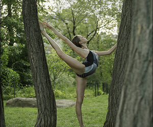ballet, ballerina project, and dance image