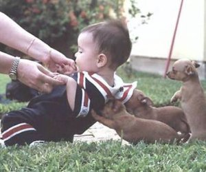 baby, dogs, and boy image