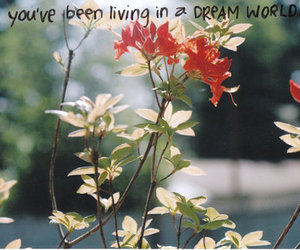 daydream, flowers, and handwriting image