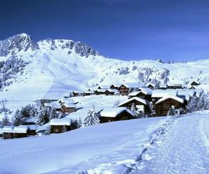 cold, nature, and season image