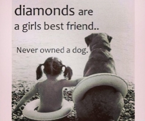 dog, girl, and quote image