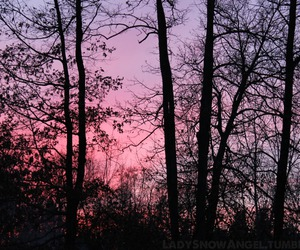 fall, photography, and pink sky image