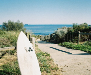 beach, photography, and surf image