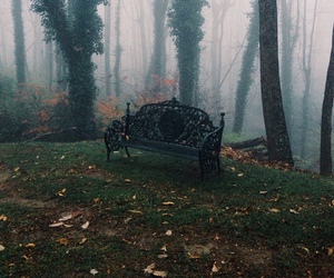 chair, foggy, and tree image