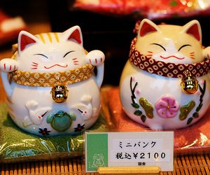 japan, cat, and japanese image