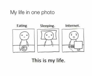 internet, life, and funny image