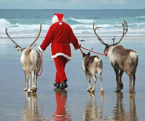 beach, christmas, and santa image