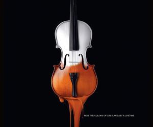 violin and fondo image