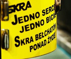 skra, polish volleyball, and skra belchatow image