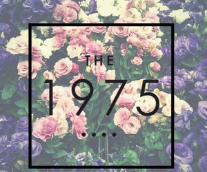 the 1975, flowers, and music image