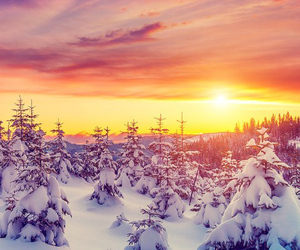 beautiful, sun, and winter image