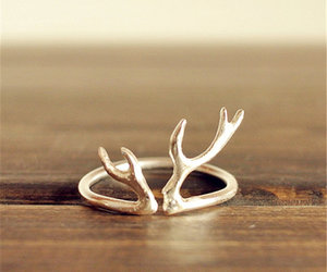 antlers and ring image