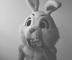 black and white, boy, and bunny image