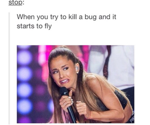 funny, ariana grande, and bug image