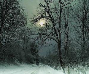 snow, nature, and christmas image