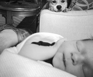 amigo, black and white, and photography image