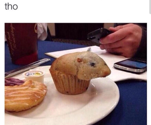 funny, hamster, and muffin image