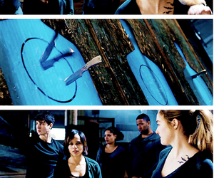 four and Shailene Woodley image