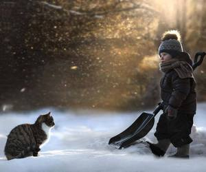 cat, snow, and boy image