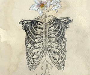 flowers, art, and skeleton image
