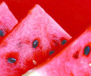 watermelon, facebook cover, and twitter header image