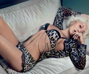 fashion, photoshoot, and Roberto Cavalli image