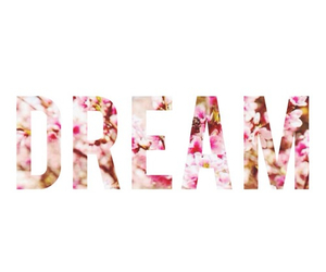 Dream, flowers, and pink image