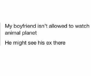 boyfriend, ex, and funny image