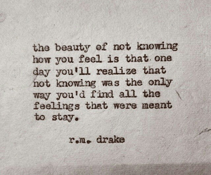 quotes, r.m. drake, and feelings image