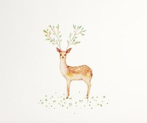 deer, nature, and cute image